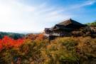 游览巨大的朱红鸟居、平安神宫、清水寺。可选择乘坐岚山观光小火车