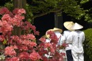 心之故乡,探访弘法大师的足迹 ,参拜四国八十八处寺院