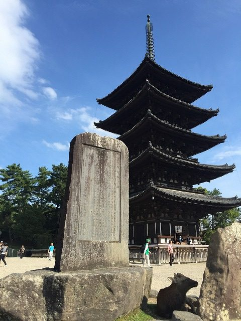(NARA) One day NARA (Visit World Heritage sites)