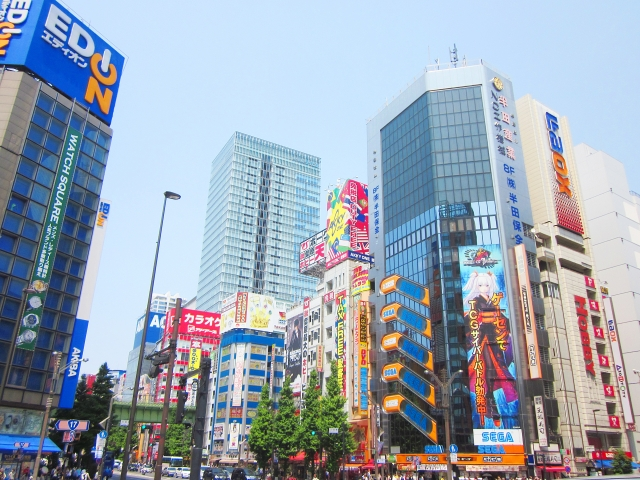 (TOKYO) Enjoy AKIHABARA with English escort One day tour