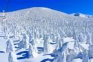 全天体验滑雪运动