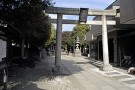 Experience a Different Culture, All in a Day at a Shinto Shrine