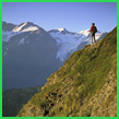 アラスカ氷河とツンドラの動物たち 7日間